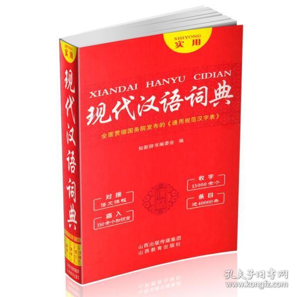 实用现代汉语词典