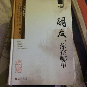 金麻雀获奖作家文丛·刘建超卷:朋友你在哪里