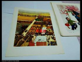 文革宣传画——金色的秋天(年画(包老保真)1201印刷厂库存