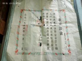 1955年澄海县第四区中心小学毕业证,年龄19岁,高级部,有县政府印,樟林文献
