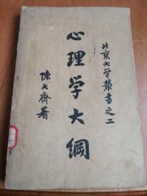 心理学大纲(北京大学丛书之二)