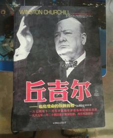 丘吉尔 ——临危受命的铁腕首相 上册