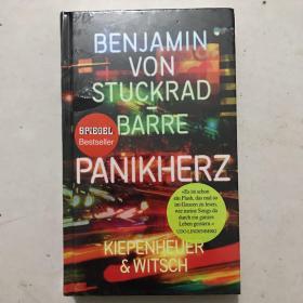 德文原版:Benjamin von stuckrad barre panikherz