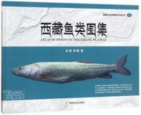 西藏鱼类图集