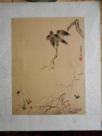 老朵云轩木版水印 《新罗山人翎毛画册》之 锦鸡 绢本