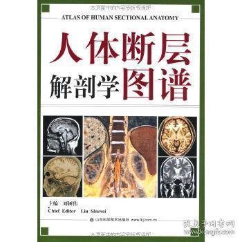 人体断层解剖学图谱