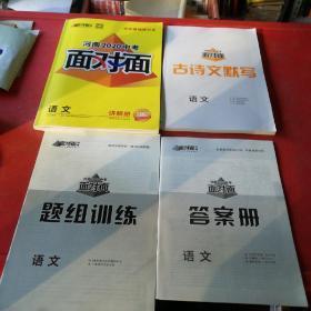河南2020中考面对面语文讲解册+古诗文默写+题组训练+答案册共4册合售