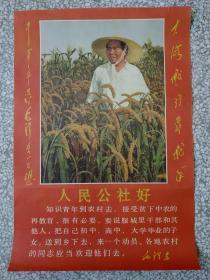 文革时期:毛主席在麦田和林彪题词彩照宣传画。