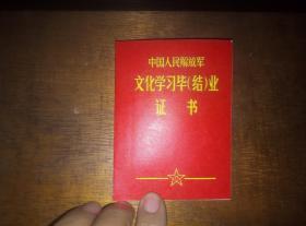 1984年文化学习毕(结)业证书