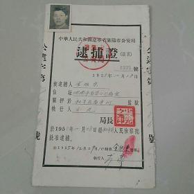 1955年老证件收藏一一逮捕证,带像片