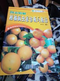 图表精解柑橘病虫害诊断与防治