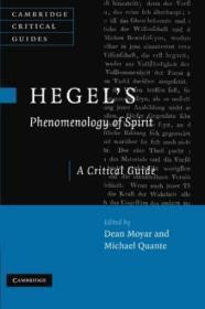 Hegels Phenomenology Of Spirit