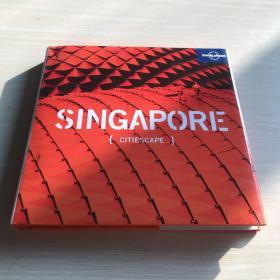 Lonely Planet Citiescape  singapore