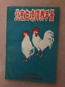 北京白鸡饲养手册