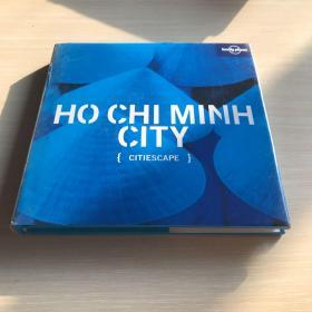 Lonely Planet Citiescape ho chi minh city