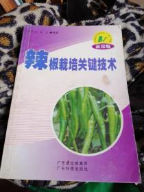 辣椒栽培关键技术