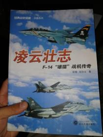 """经典战史回眸·兵器系列·凌云壮志:F-14""""雄猫""""战机传奇"""
