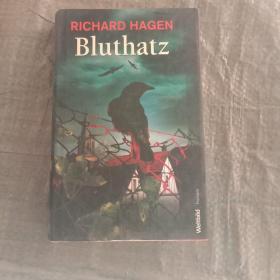 RlCHARD HAGEN Bluthatz(理查德哈根 血舱口)