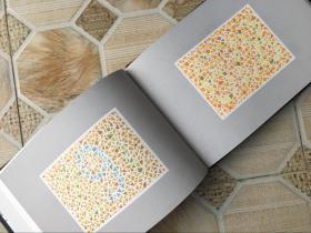 现货 色盲检查图(第五版第5版)(精) 第五版 俞自萍 人民卫生 色觉检查图 色觉色盲色弱 驾照/体检测试检查检测图全套辨色图谱