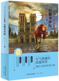 (适合中小学)世界经典文学名著*巴黎圣母院