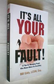 Its All Your Fault!: 12 Tips for Managing People Who Blame Others for Everything (原版外文书)