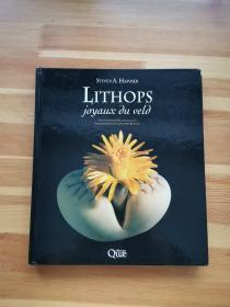 LITHOPS Treasures of the veld