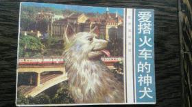 爱撘火车的神犬