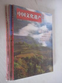 中国文化遗产  2009年  第1、2、3期3本合售