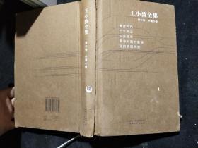 王小波全集(第六卷中篇小说)