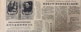 解放日报1982年5月22日。《为纪念中华人民共和国名誉主席宋庆龄同志逝世一周年。邮电部将于5月29一发行记念邮票一套》国务院公布国家建设正用土地条例。《上海颁发第一届儿童文学园丁奖。》