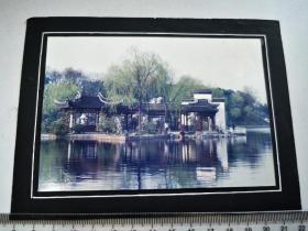 1991前后,包河公园浮庄