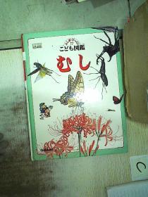 日文昆虫图鉴一本(36)