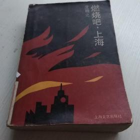 燃烧吧,上海