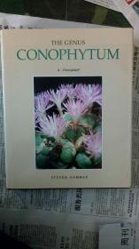 The gunus conophytum肉锥属(番杏科多肉植物专著)英文。