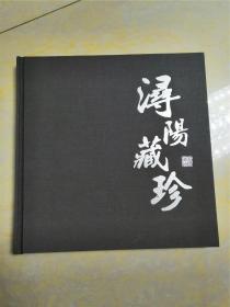 浔阳藏珍(介绍九江历史文物)全彩图