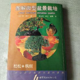 图解微型盆景栽培.4.杜松·枫树
