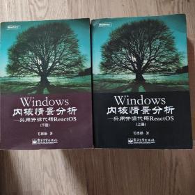 Windows内核情景分析:采用开源代码ReactOS   上下 全两册 二本合售