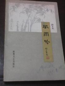 风雨吟(许士杰著  湖南文艺出版社)