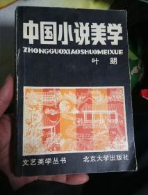 中国小说美学