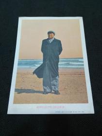 宣传画:世界革命人民心中的红太阳毛主席万岁(上海人民美术出版社)
