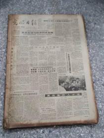 光明日报  1985 4月  原版报合订本