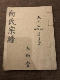 向氏宗谱&左师堂&上卷&建国后&16开&历史&族谱&姓氏&家谱
