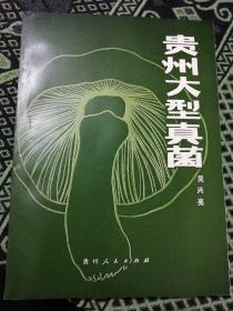 贵州大型真菌