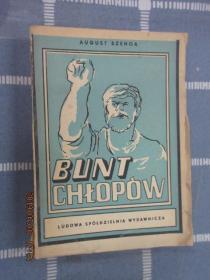 外文书  BUNT  CHLOPOW  共348页  (毛边本)  详见图片