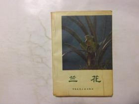二手旧书《兰花》沈渊如 等著 中国建筑工业出版社    e3-1