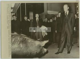1975年美国总统福特访华,福特总统参观北京农业展览,美联社新闻传真照片