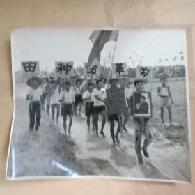 为革命种田(手拿穿军装的毛像 和最高指示) 尺寸大 原版老照片