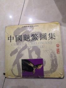 中国龟鳖图集(精装  12开)