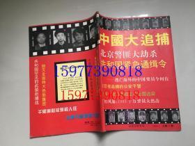 中国大追捕 纪实文学专号 1994.1