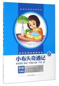 小布头奇遇记(彩绘升级版)/世界经典名著阅读馆
